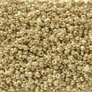 11-5101 Duracoat Galvanized Pale Gold (like DB2501) 11/0 Miyuki