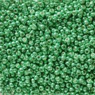 11-5105 Duracoat Galvanized Green (like DB2505) 11/0 Miyuki