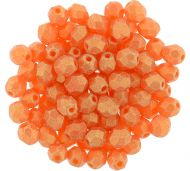 FP04 Sueded Gold Hyacinth 4 mm Fire Polished - 100 x
