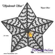Tutorial Spider Web 3D Peyote Star + Basic Tutorial Little 3D Peyote Star (download link per e-mail)