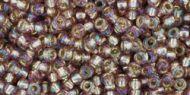 TR-11-2026 Silver-Lined Rainbow Amethyst 11/0 Toho