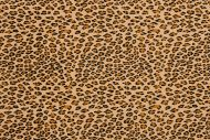 US-A Cheetah Brown UltraSuede